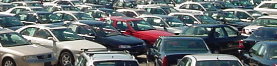 used cars on a dealership lot